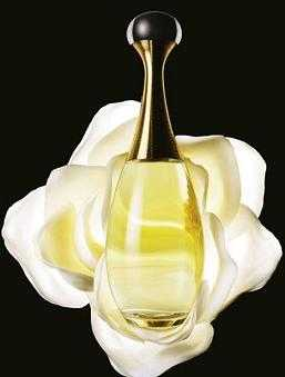 perfumesdiaynoche7