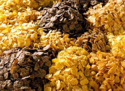 Buscas prevenir las arrugas ap ntate al cobre web de la belleza - Alimentos que contienen silicio ...